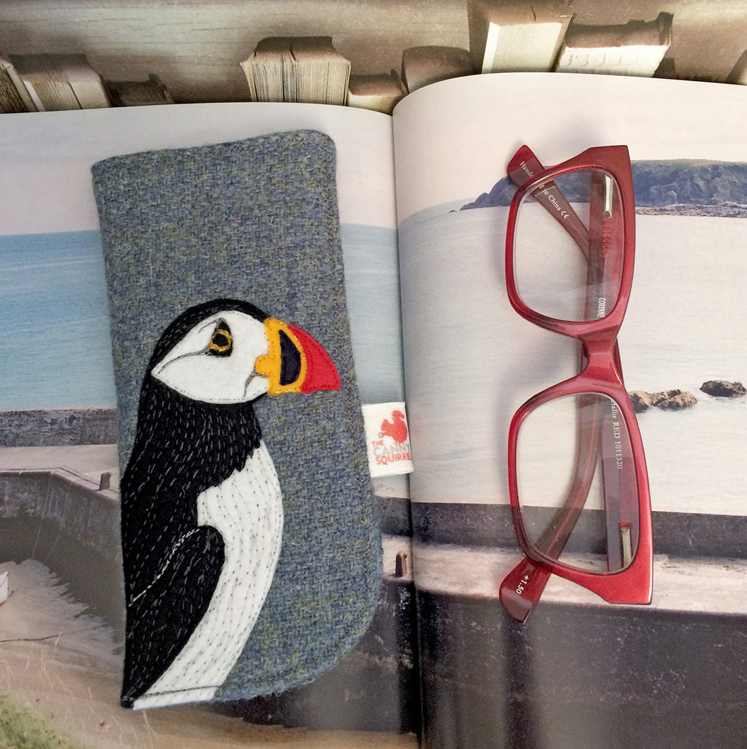 Puffin glasses case