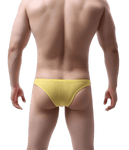 Micro Tech Bikini Briefs