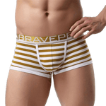 Premium Striped Trunks