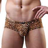 Leopard Bulge Trunks