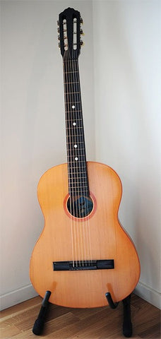 7 string acoustic guitar