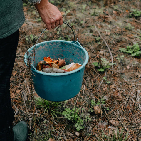 Composting Tips, image by Maria Naichenko