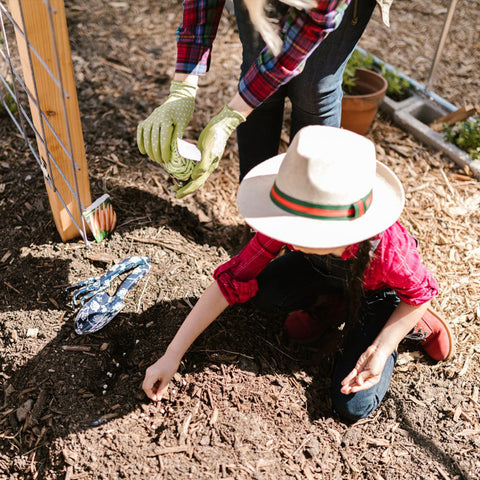 Composting tips, image by Rodnae Prod