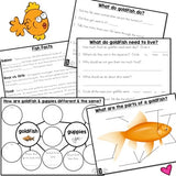 Animals 2x2 Interactive Science Journal for the FOSS unit... Print and GO!
