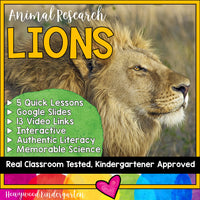 Lions ... 5 days of awesome research mixed w/ literacy, videos, & FUN!