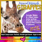Giraffes ... 5 days of animal research mixed w/ literacy skills, videos, & FUN