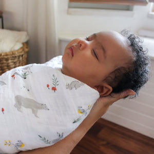 aden + anais naturally 4-pack muslin swaddles