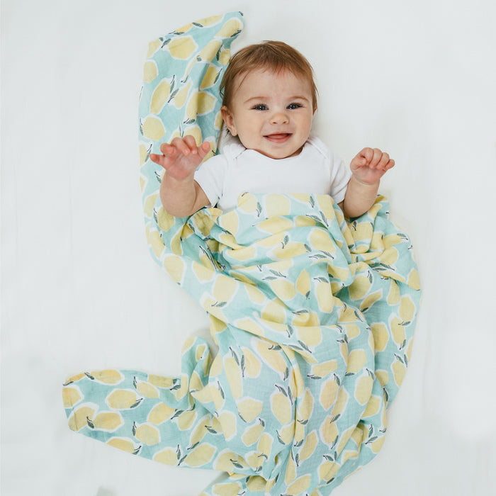 aden + anais essentials farm to table 4-pack swaddles
