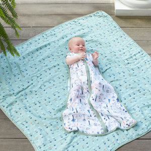 aden + anais essentials dinotime dream blanket