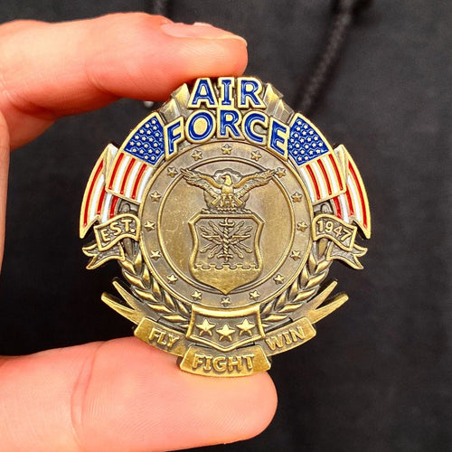 US Air Force Veteran's Day Pin