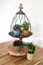 Roman Plant Cage Old Gold S3 D22/31H35/43