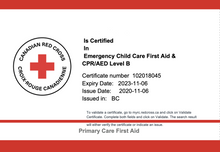 Load image into Gallery viewer, Emergency Child Care First Aid with CPR/AED Level B