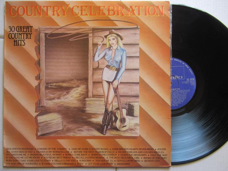 Various Artists | Country Celebration | 30 Great Country Hits (RSA VG)