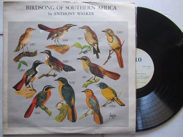 Anthony Walker | Bird Song Of Southern Africa ( RSA VG+ )