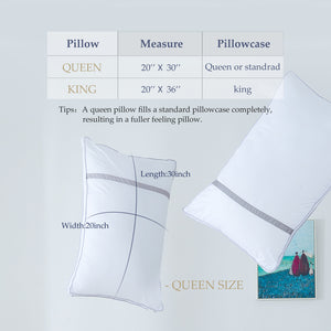 BedStory Sleeping Pillows Hotel Collection Luxury Pillow 2 Pack