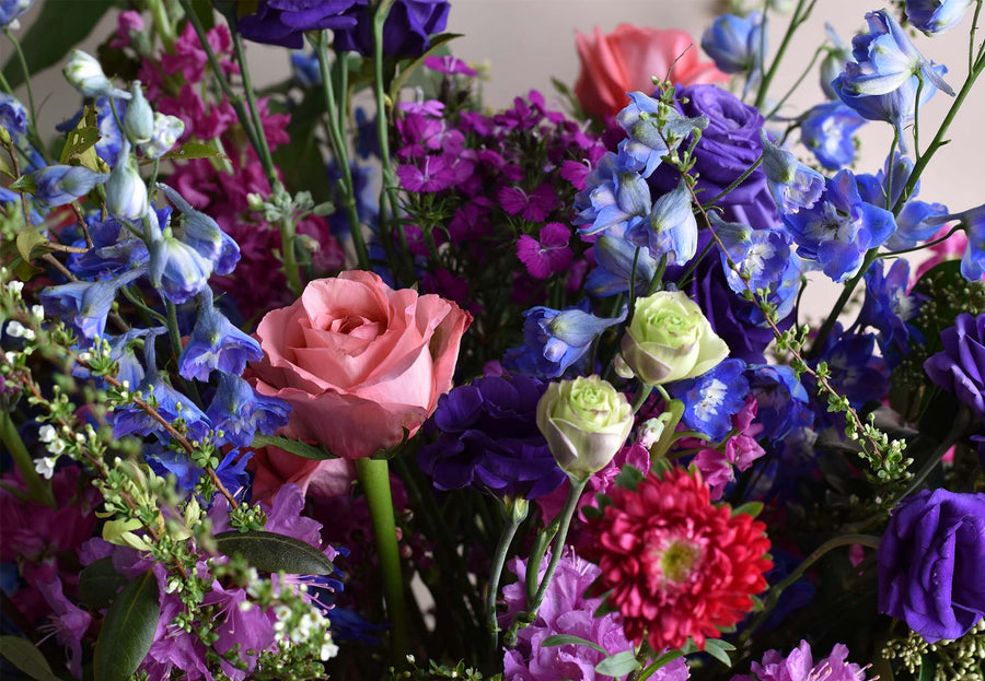 bright pink blue flowers