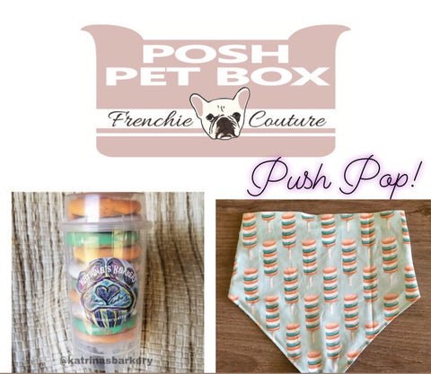 Posh Pet Box - Push Pop Edition - Dog Bandana and Treat Set