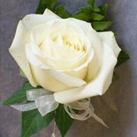 Classic White Rose Buttonhole