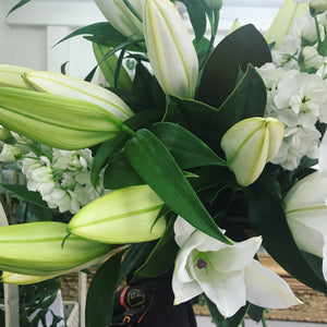 Classic Lillies & Stock