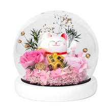 Load image into Gallery viewer, Lucky Cat & Preserved Rose Flower with Light