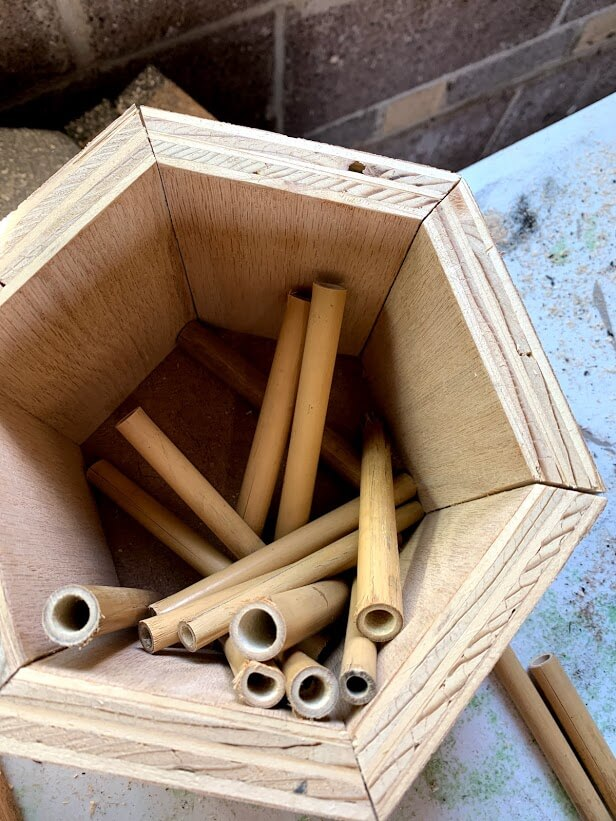 bee hive build for native colorado bees