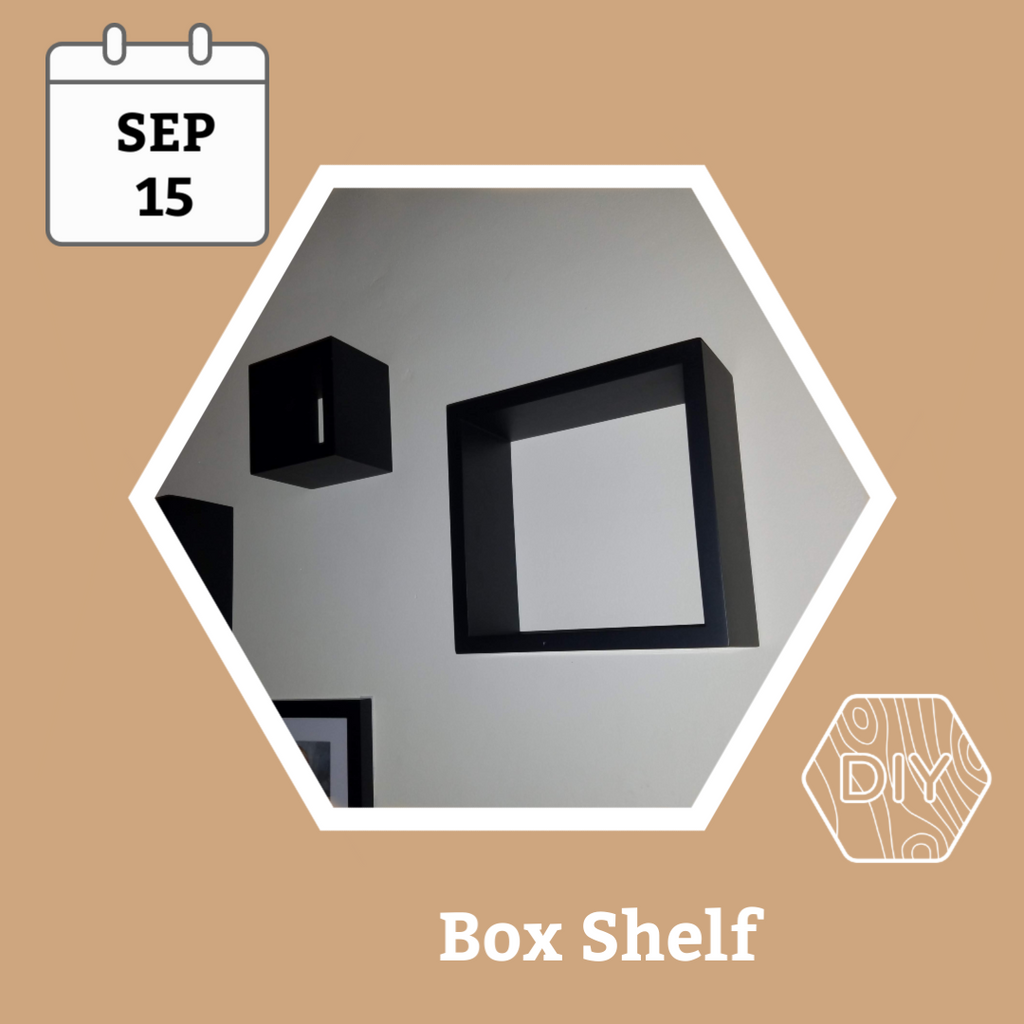 Box Shelves Workshop