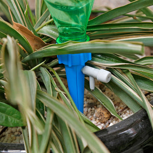 Automatic watering device - RB Trends