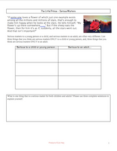 The Little Prince Graphic Organizers (theme, serious matters)