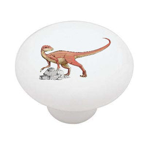 Kids dinosaur decor | Dinosaur Drawer Knob