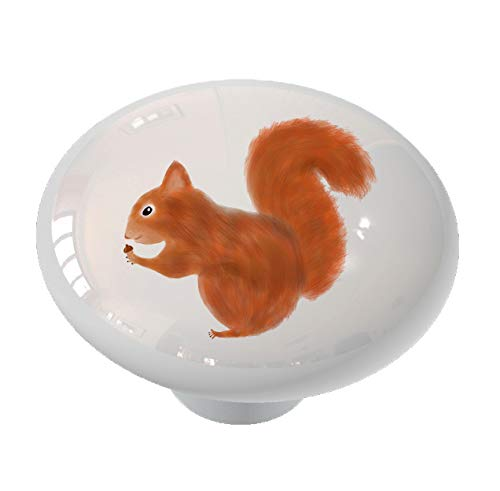 Acorn Squirrel Ceramic Drawer Knob