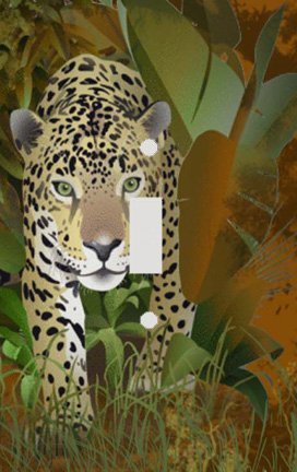 Leopard in the Undergrowth Switch Plate Cover