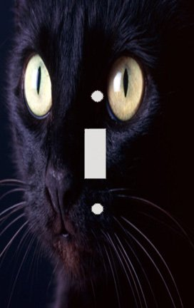 Midnight Black Cat Switch Plate Cover