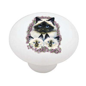 Birman Cats Ceramic Drawer Knob