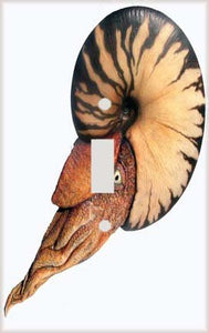Dinosaur Ammonite Switch Plate Cover