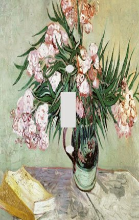 Vincent Van Gogh Oleanders and Books Switch Plate Cover