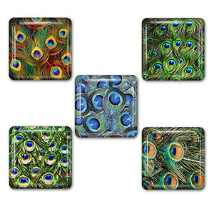 Peacock Feathers Square Refrigerator Magnet Set