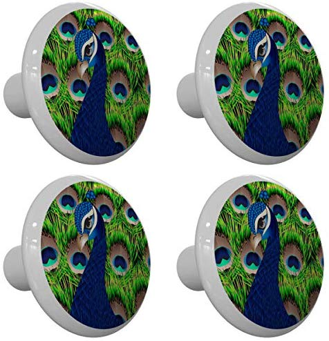 Set of 4 Peacock on Feathers Peacock Drawer Knobs