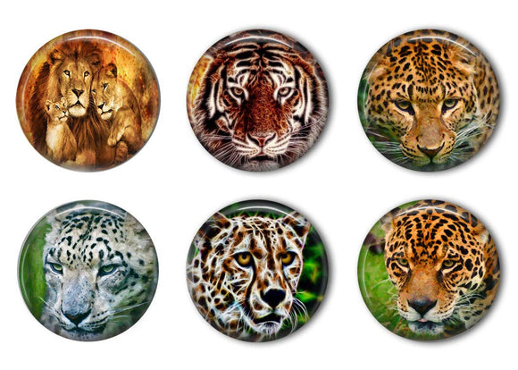 Jungle Cats Refrigerator Magnet Set