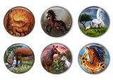 Horses and Foals Refrigerator Magnet Set