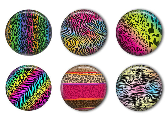 Rainbow Animal Print Refrigerator Magnet Set