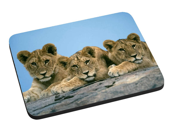 Three Little Lion Cubs Mouse Pad