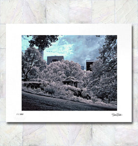 Central Park Hill Limited Edition Signed Fine Art Print By Gina Brake