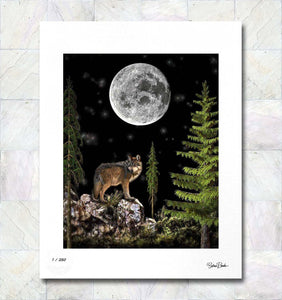 Night Wolf Limited Edition Fine Art Print By Gina Brake