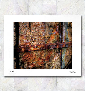 Decaying Beauty Limited Edition Signed Fine Art Print By Gina Brake