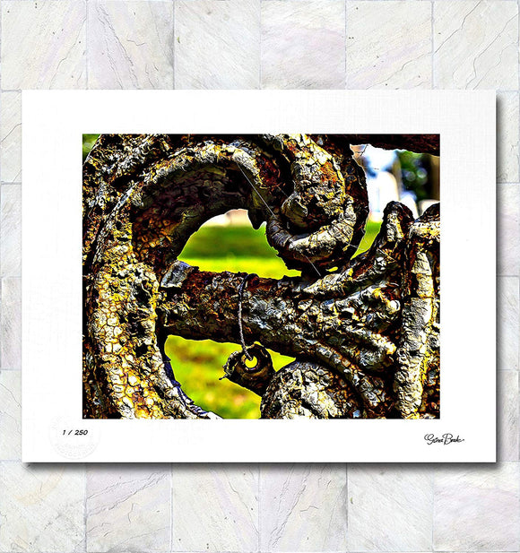 Rusty Curve Limited Edition Signed Fine Art Print By Gina Brake