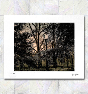 Central Park at Nightfall Limited Edition Signed Fine Art Print By Gina Brake