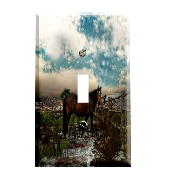 Horse Corral Switch plate