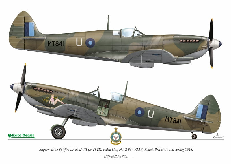ED48003 - Sexy Spitfire -  1:48