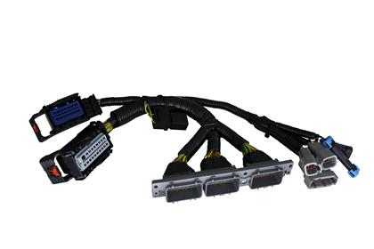 Infinity Core Accessory Wiring Harness for AEM 30-2853 IGBT Smart Coils with Ford Cyl Numbering