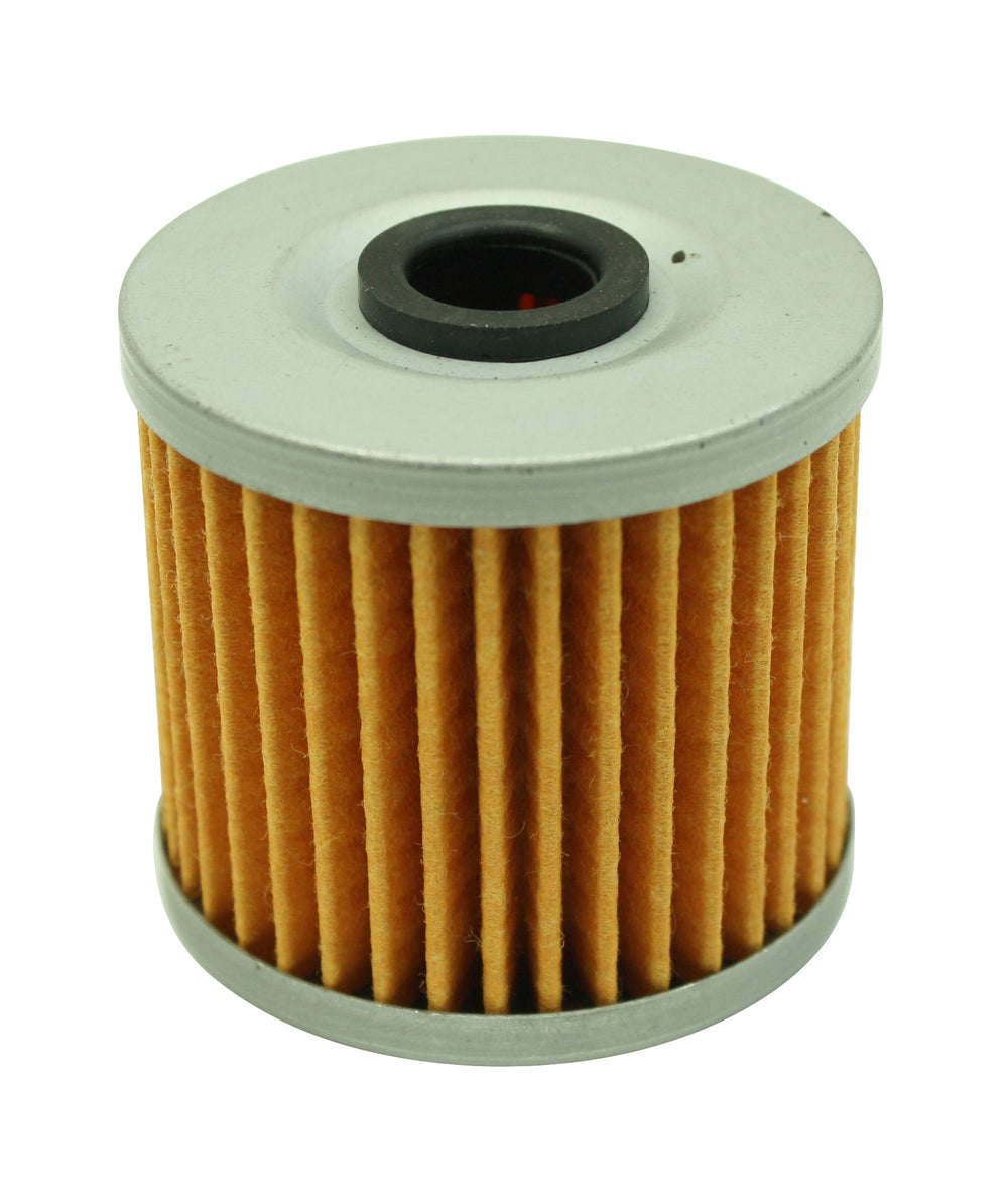 High Volume Replacement Fuel Filter Element for 25-200BK